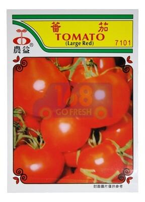 (SEED 种子)Tomato 番茄  7016