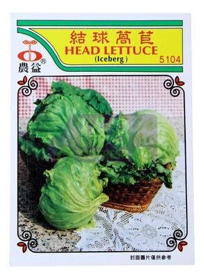 (SEED 种子) Head Lettuce 结球莴苣 5043
