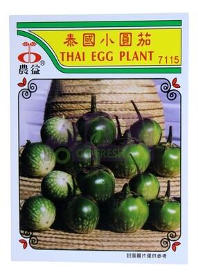 (SEED 种子) Thai Eggplant 泰国小圆茄 7153