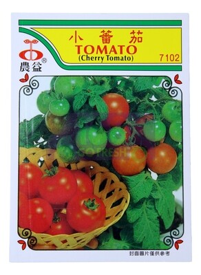 (SEED 种子)Tomato 小番茄 7023