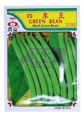 (SEED 种子)Green Bean 四季豆 2028