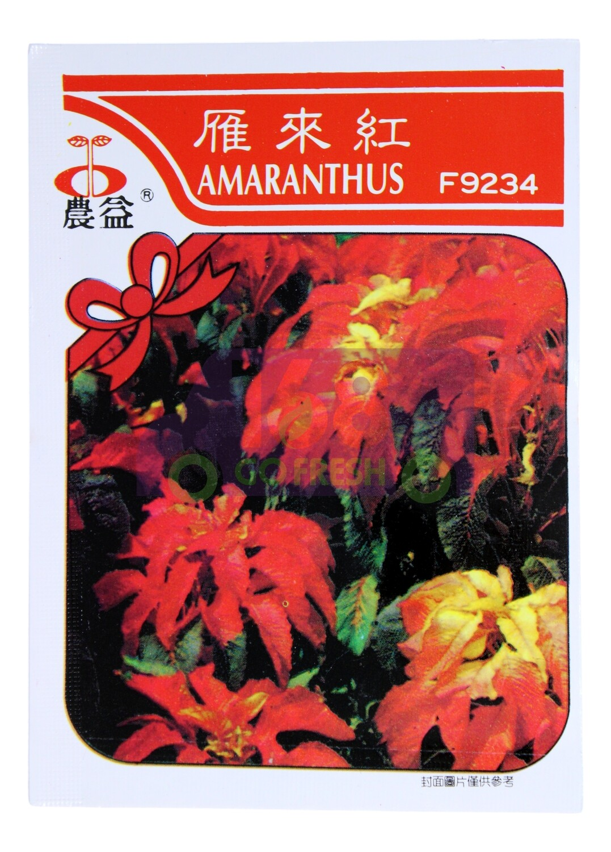 (SEED 种子)Amaranthus 雁来红 F9234