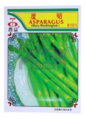 (SEED 种子)Asparagus 芦笋