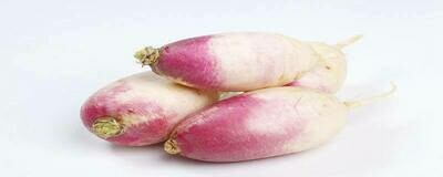 PURPLE DAIKON 紫色萝卜 3.8 - 4.0 LB