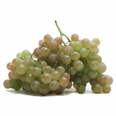 Muscat Grapes 桂花提(1.4-1.6LB)