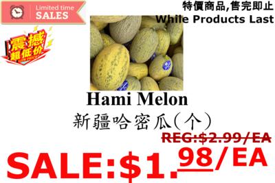[LIMIT TIME SALE 限时特价]Hami Melon (1 Count) 哈密瓜 (1个)