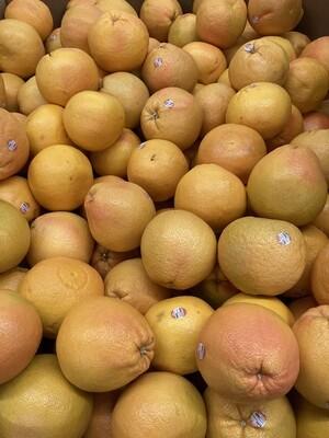 Pomelo葡萄柚子(一个)