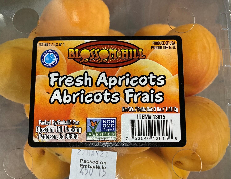 Apricot 新鲜杏子 3LB装盒装