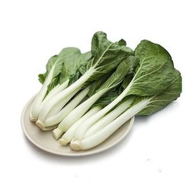 Long Bok Choy Sum 长白菜 1.8 - 2LB