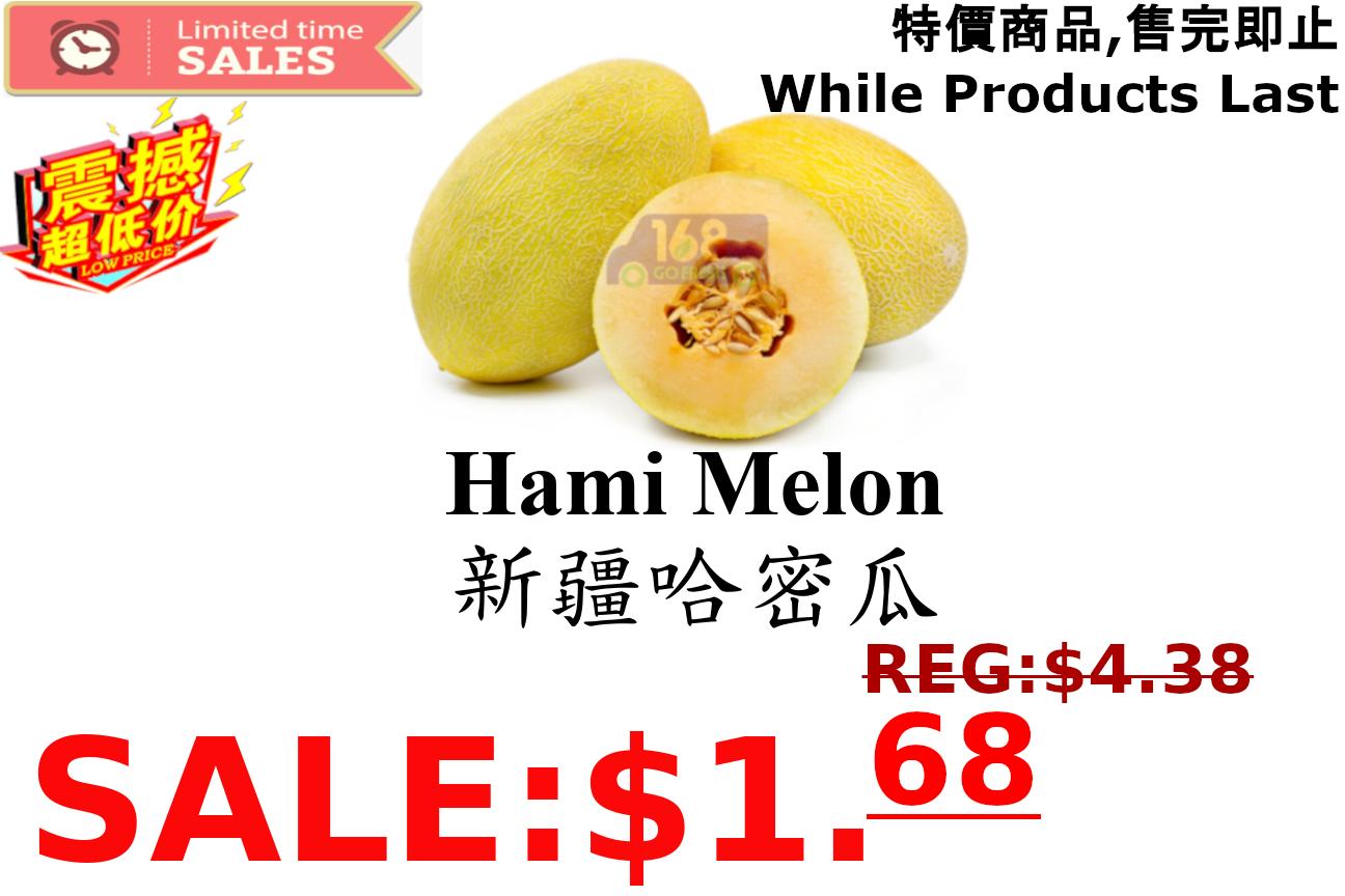[LIMIT TIME SALE 限时特价] Hami Melon (1 Count)新疆哈密瓜 (1个) 3.5-4.5LB