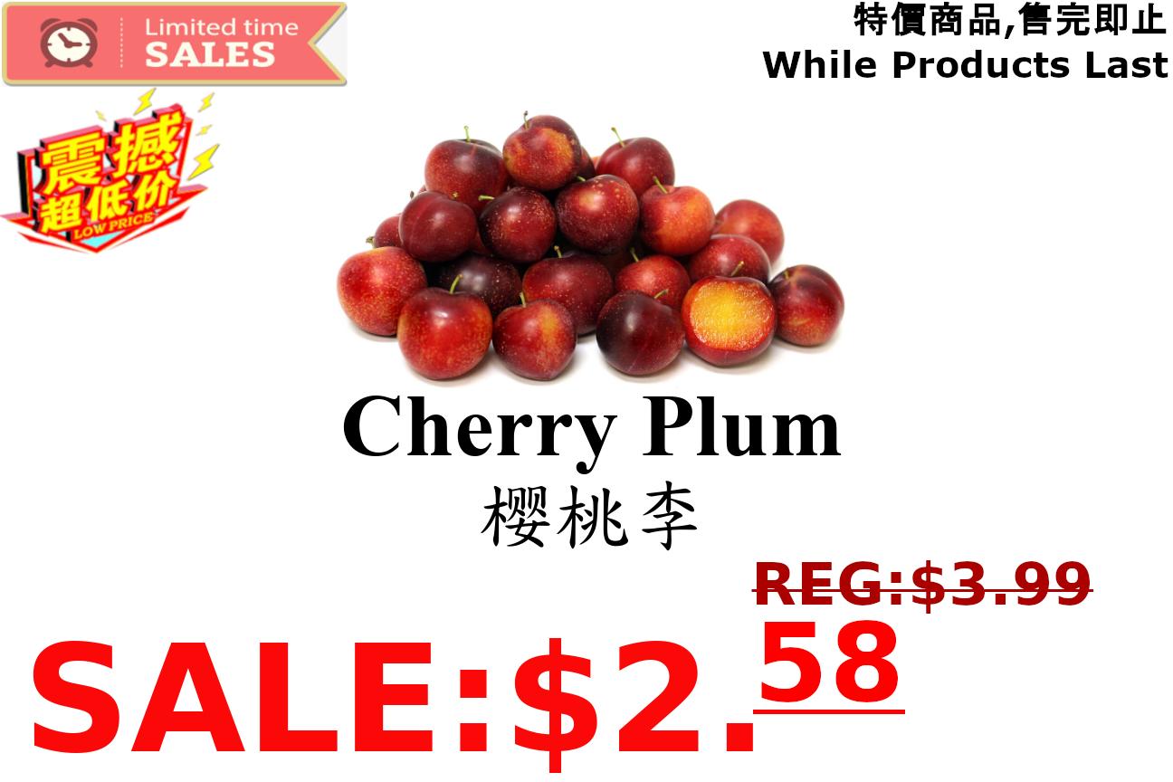 [LIMIT TIME SALE 限时特价] Cherry Plum 樱桃李 1.8 - 2 LB