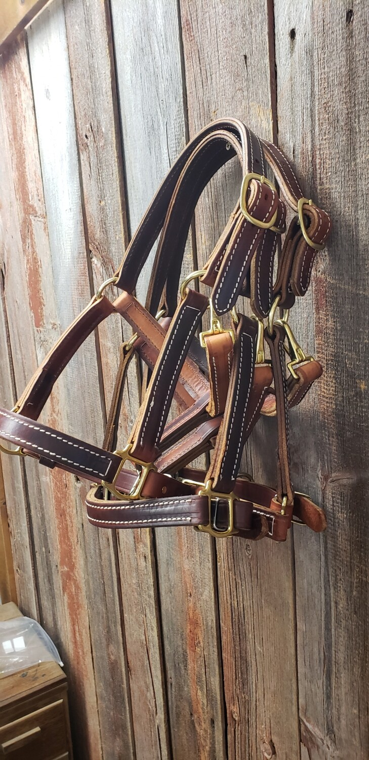 Saddle Leather turn out halter with brass H.W. oil dipped