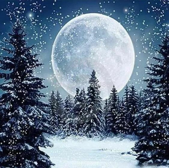 Christmas Paint pARTy at the Greenhouse Tavern, Tues, 1st Dec, 6pm