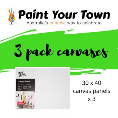 Canvas Panels- 3 pack