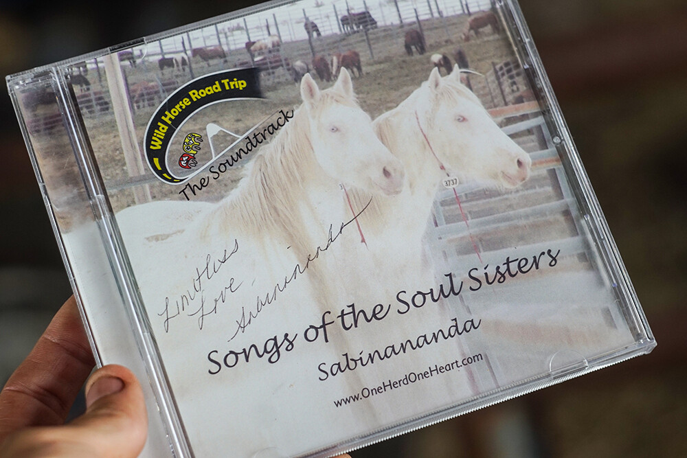 Sabinananda Songs of the Soul Sisters CD - Signed by the Artist + Digital Download Version