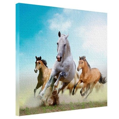 Картина на ткани, 65х65 см Лошади бегут H6565_ZVR001