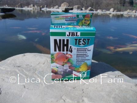 Test Ammoniaca NH₃-NH₄