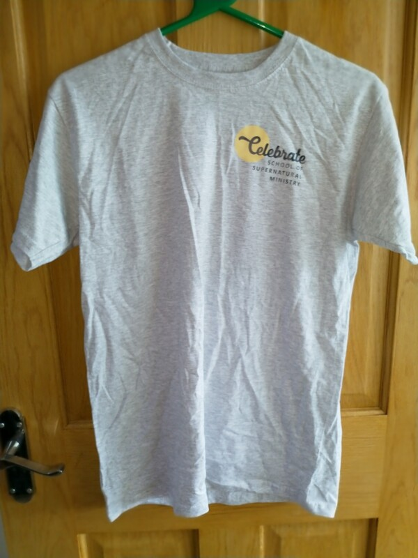Celebrate T shirt - old design Grey Small