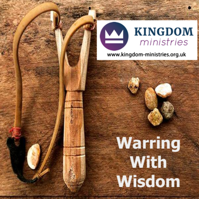 Warring with Wisdom Conference Teaching Set by Dawna De Silva