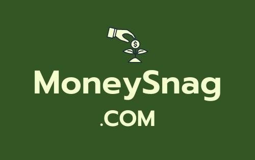 MoneySnag .com is for sale
