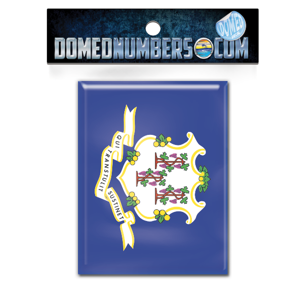 Connecticut Flag Domed Decal, Choose Your Size