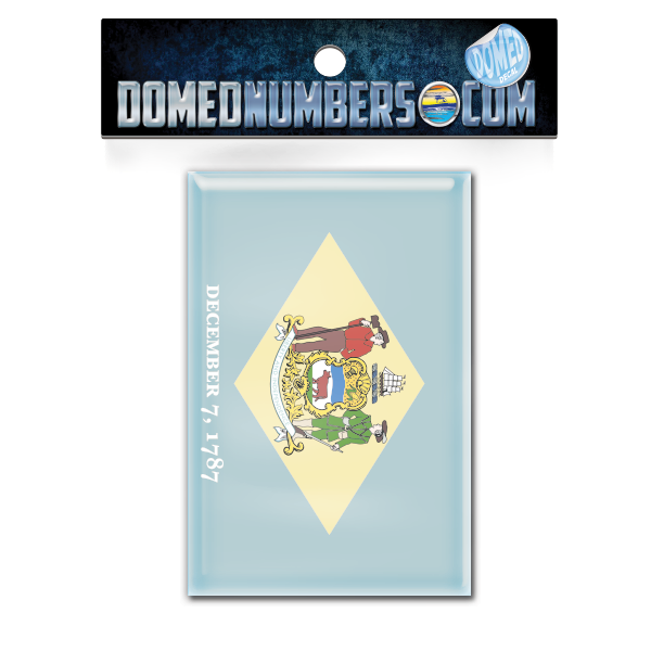 Delaware Flag Domed Decal, Choose Your Size