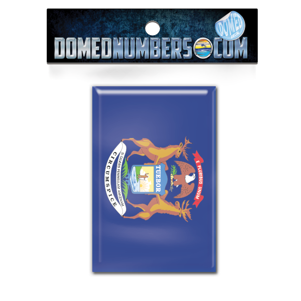 Michigan Flag Domed Decal, Choose Your Size