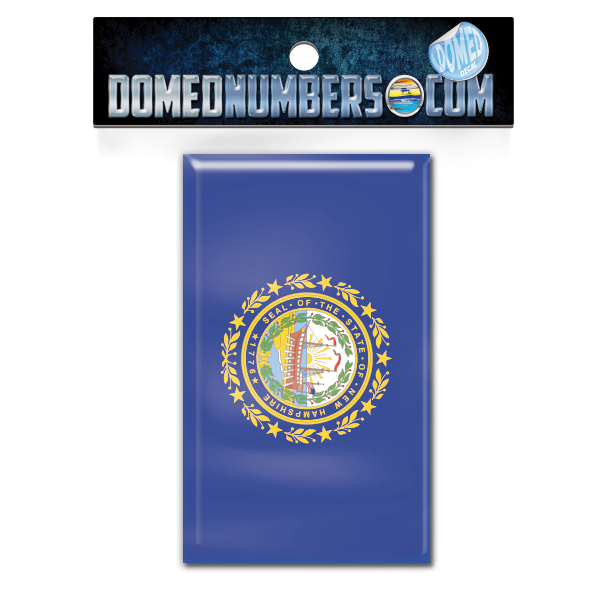 New Hampshire Flag Domed Decal, Choose Your Size
