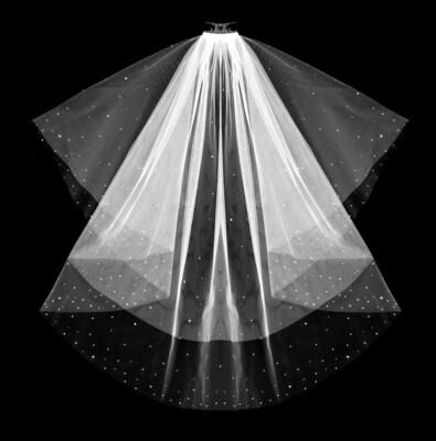 'Stardust' Veil & Blusher