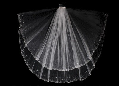 Gorgeous Veil & Blusher