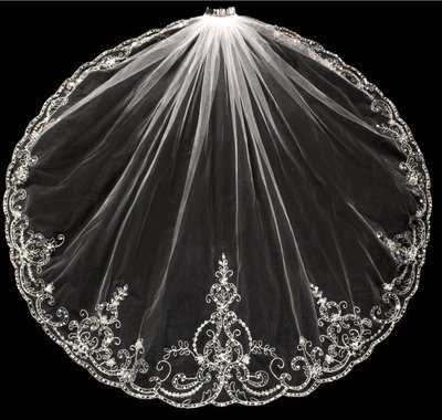 Exquisite Silver Thread Veil