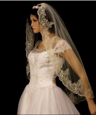 Exquisite Silver Thread Alencon Veil