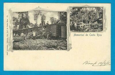 COSTA RICA PPC train 1905 Limon to England