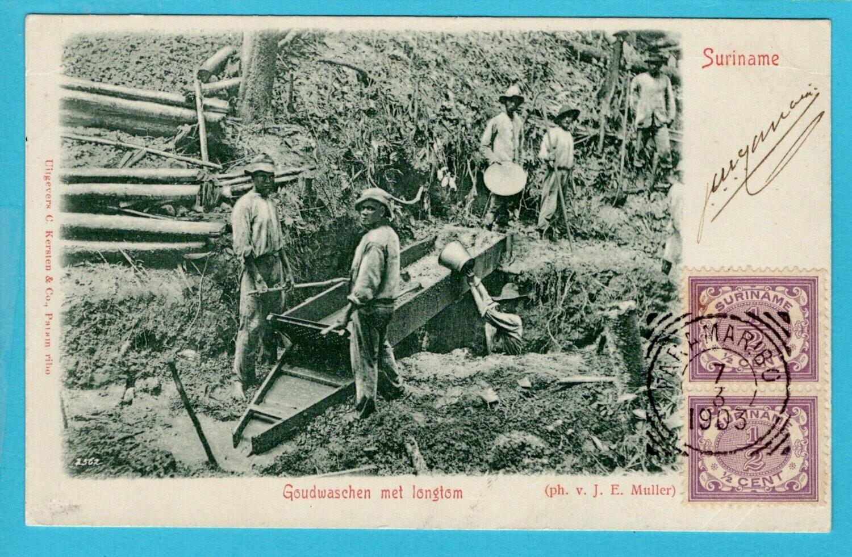 SURINAME prentbriefkaart goudwassen 1903 Paramaribo