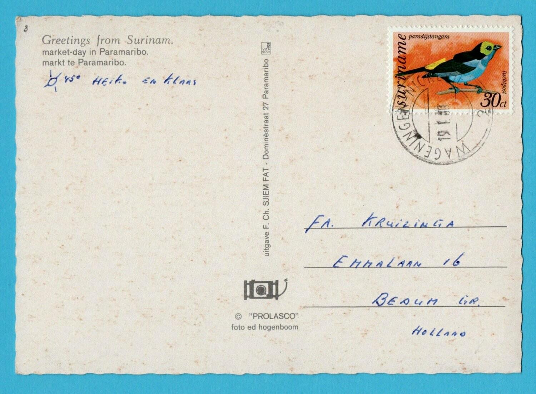 SURINAME prentbriefkaart 1980 Wageningen-Nickerie