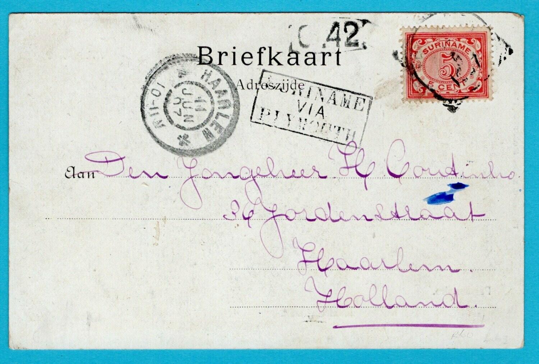 SURINAME prentbriefkaart 1907 Paramaribo naar Haarlem