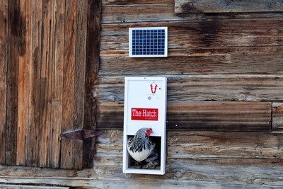 The Hatch Off-Grid Automatic Chicken Door