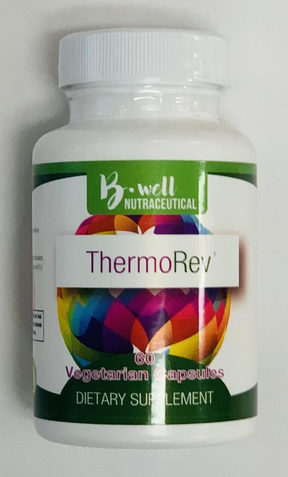 Thermo Rev 00181