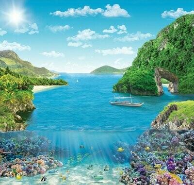 Коралловый риф. Х 5