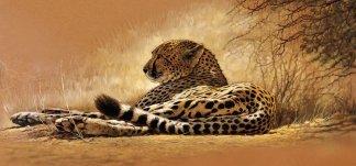 Гепард. Фотообои, гепард. Размер: 291х136 см.