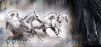 Фаворит. Фотообои, лошади. Размер: 291х136 см.