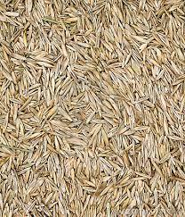 Over Seeding for lawns under 2000 sq ft. For lawns larger click on Buy Now and a popup will ask for the size
