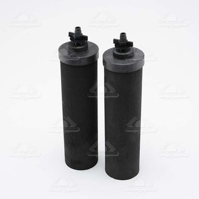 BLACK BERKEY® Purification Elements One Set of 2 filters