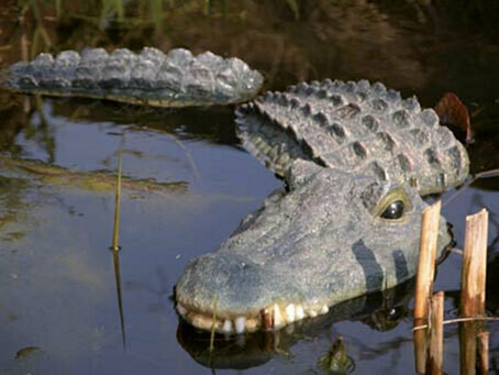 3-delad krokodil