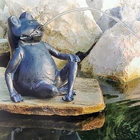 Vattensprutande groda stor