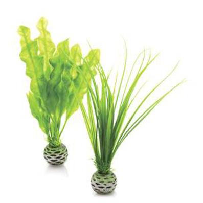 Växtset Grön liten  2 st