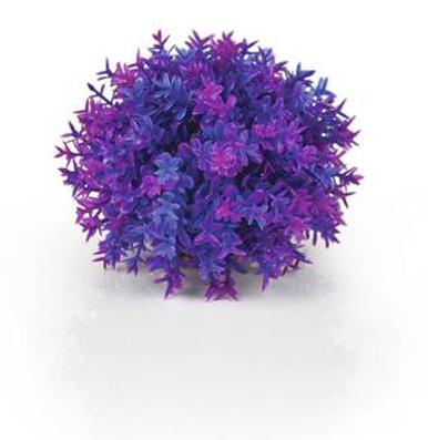 Blomsterboll Lila