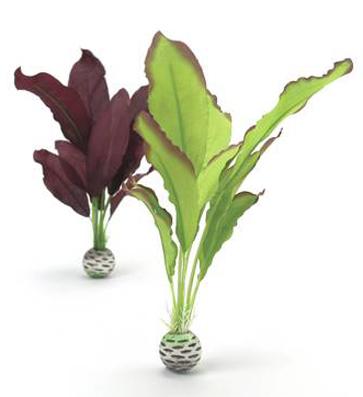 Växtset siden medium mörklila-grön
