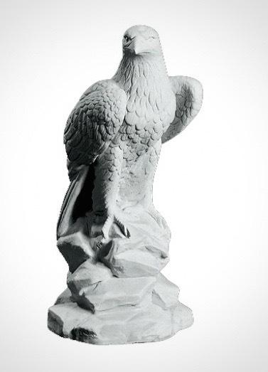 Staty Örn DY995