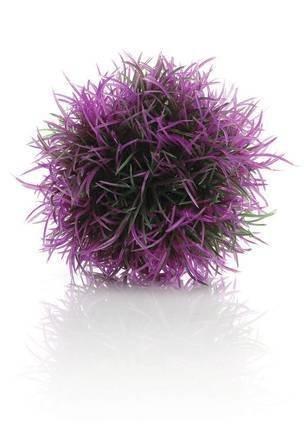 Växtboll Lila